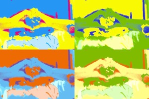 Picture of Roshaunda's hands held together to create a heart.  The picture is divided into 4 different colored squares, using a pop art effect.