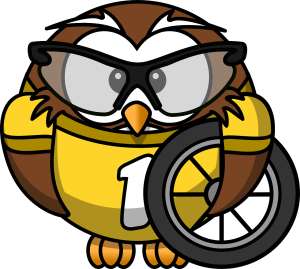 Cartoon owl holding a bike wheel by OpenClipartVectors on Pixabay at https://pixabay.com/en/owl-animal-bicycle-bike-bird-158413/