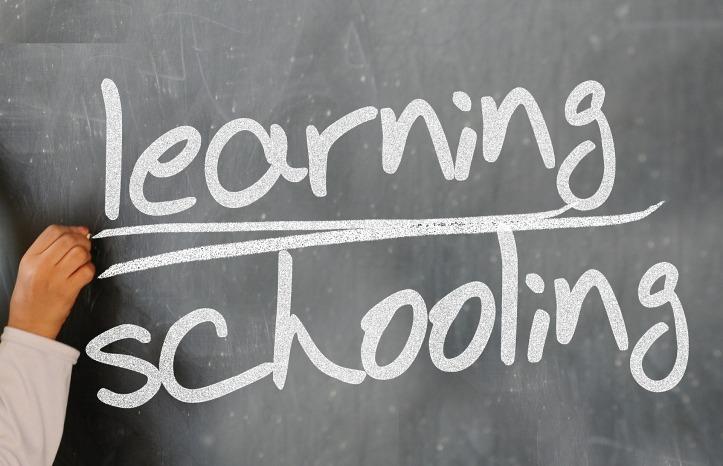 learning schooling