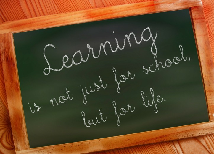 "Chalkboard that reads ""Learning is not just for school, but for life"" by geralt on Pixabay at https://pixabay.com/en/school-black-green-may-refer-to-73497/"