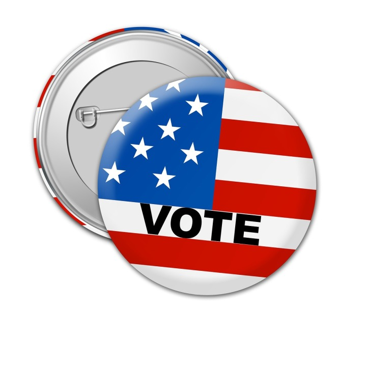 Vote lapel pin by PeteLinforth on Pixabay at https://pixabay.com/en/usa-vote-election-political-voting-1327105/