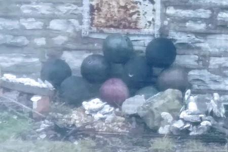Bowling ball pyramid on the side of our neighbor's house